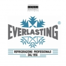 Everlasting koel- en vriesapparatuur - Horeca Equipment Holland